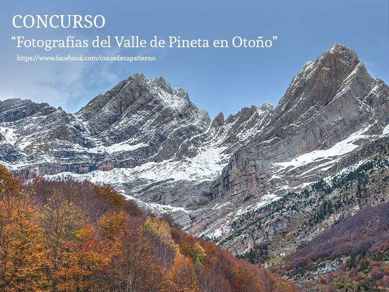 Concurso fotografia Otoño en Pineta