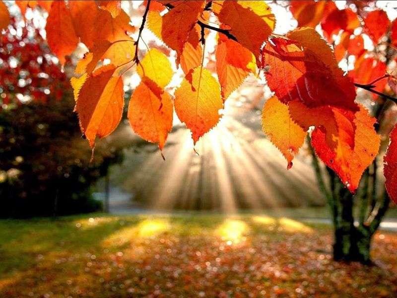 otoño casa rural
